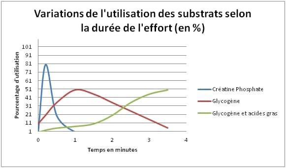 graphique montrant l'évolution du type d'énergie utilisée au cours du temps lors d'un effort physique